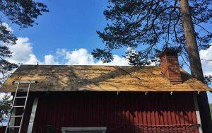 Sauna, Lehtosaari